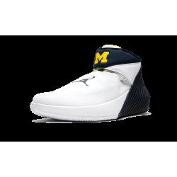 Air Jordan 31 Why Not Zero.1 Michigan PE